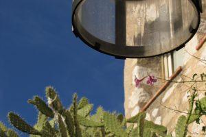 eze cactus 300x200 - Travel Contest Roundup: May 7, 2014