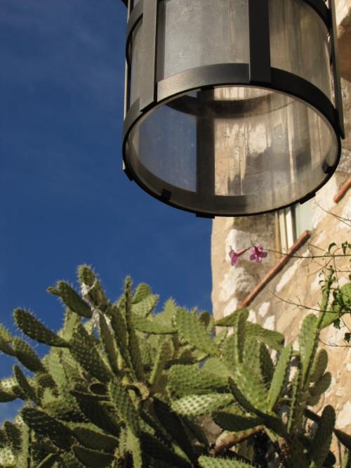 eze cactus 500x666 - Europe: Nice - Cote d'Azur, Day 8