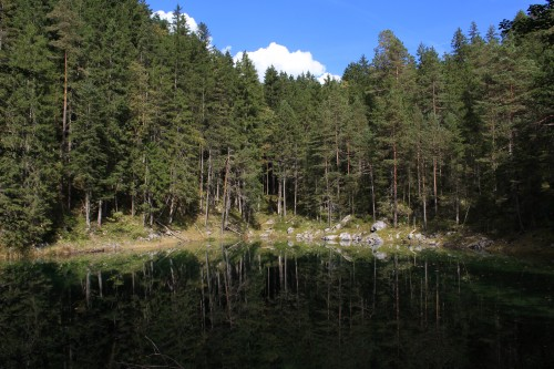 mountain lake trees forest 500x333 - A visit to Zugspitze & Lake Eibsee from Garmisch-Partenkirchen, Germany