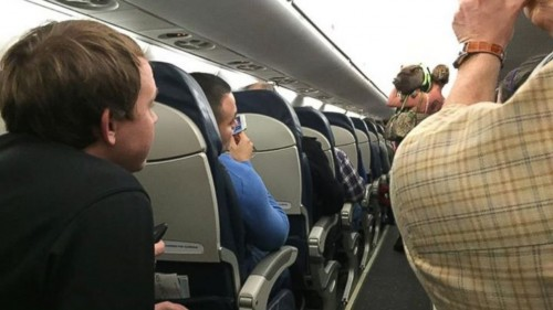 pig plane usairways 500x281 - Woman booted off flight after bringing disruptive pig aboard
