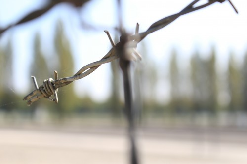 dachau barbed wire 500x333 - Dachau, Germany - Visiting the former concentration camp: Day 9