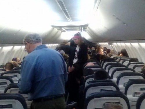 scorpion plane oregon 500x375 - Scorpion stings woman on Alaska Airlines flight