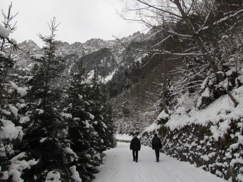 hiking liechtenstein 500x375 - A day trip from Zurich to Liechtenstein & so much more (Or, why sometimes it's good to get into cars with strangers)