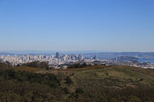 san francisco san bruno mountain 300x200 - Hiking in San Bruno Mountain State Park - Summit Loop Trail