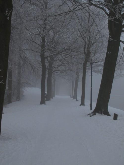 bruges park winter 500x666 - A winter day in Bruges, Belgium