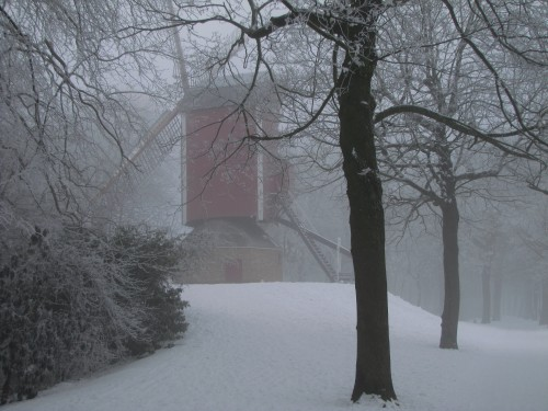 bruges windmill snow trees 500x375 - A winter day in Bruges, Belgium