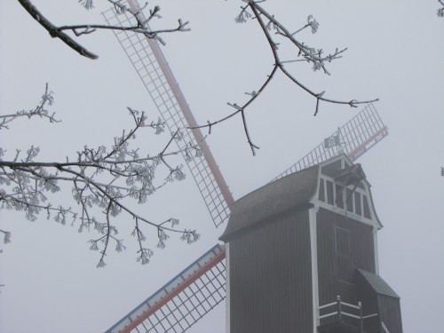 bruges windmill winter 500x375 - A winter day in Bruges, Belgium