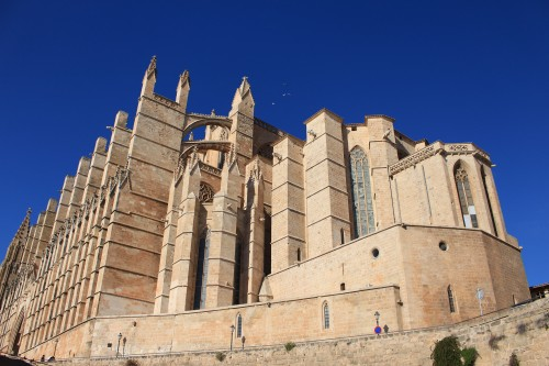 palma cathedral mallorca 500x333 - Top 10 things to do in Palma de Mallorca, Spain: Around The World