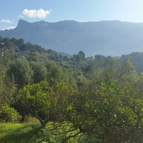 serra de tramuntana soller mallorca 500x500 - Soller, Mallorca, Spain: Around The World