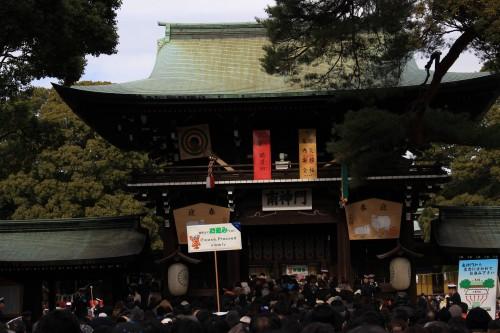 IMG 1101 500x333 - A New Year Hatsumode visit to Meiji Jingu shrine in Tokyo, Japan