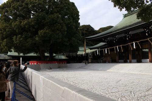 meiji shrine tokyo new year 500x333 - A New Year Hatsumode visit to Meiji Jingu shrine in Tokyo, Japan