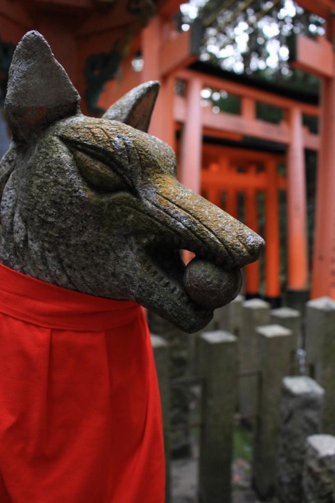 fushimi inari fox 667x1000 - A visit to Ryoanji Temple, Kinkaku Temple, & Fushimi Inari Shrine + eating takoyaki & okonomiyaki in Kyoto, Japan