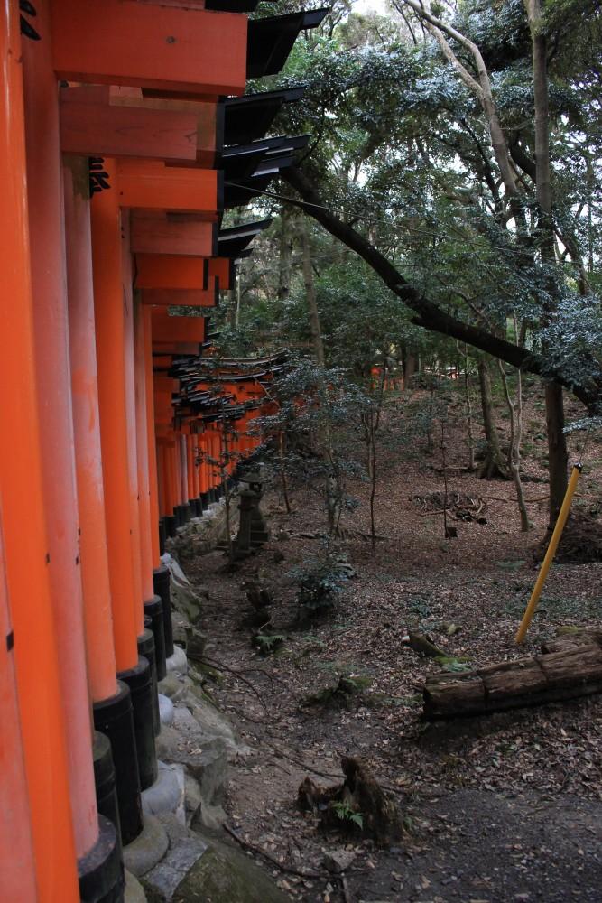 fushimi inari shrine gates 667x1000 - A visit to Ryoanji Temple, Kinkaku Temple, & Fushimi Inari Shrine + eating takoyaki & okonomiyaki in Kyoto, Japan