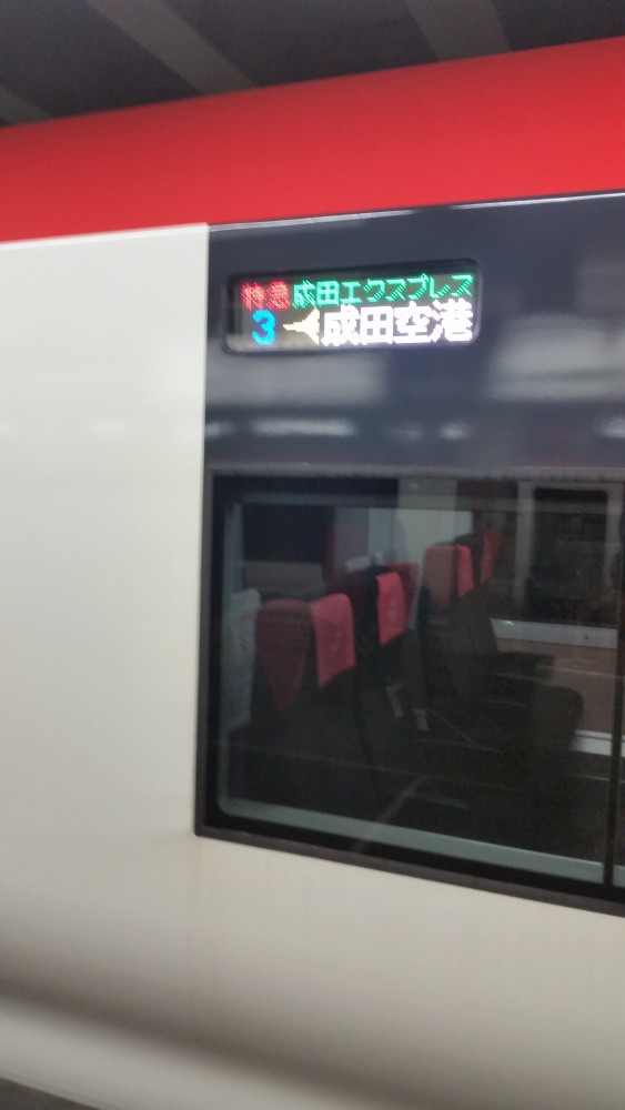 narita express 563x1000 - Japan Rail Pass, Shinkansen, & Narita Express train reviews