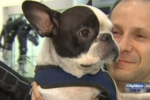 dog diverts air canada flight 300x200 - Hero Air Canada pilot diverts flight to save dog in cargo hold
