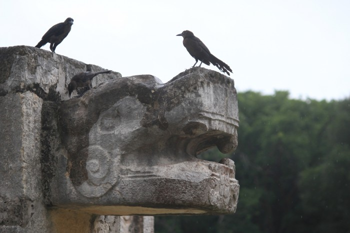 carvings birds chichen itza 700x467 - 24 hours in Cancun, Mexico – A trip to Chichen Itza
