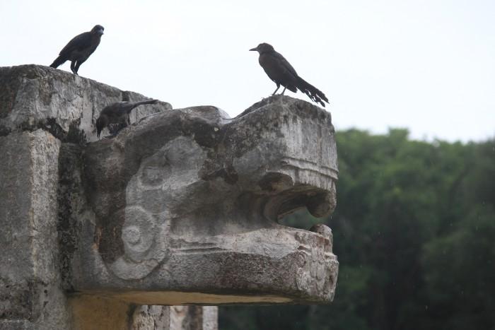 carvings birds chichen itza 700x467 - 24 hours in Cancun, Mexico – A trip to Chichen Itza