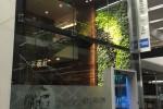 centurion lounge sfo 150x100 - American Express Centurion Lounge San Francisco SFO review