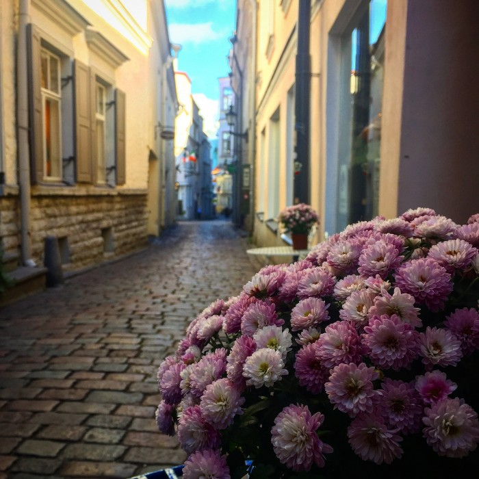old town tallinn alleys 700x700 - Exploring the views of the Old Town Tallinn, Estonia