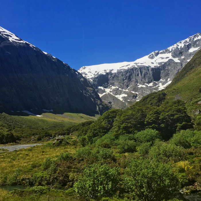 fjordland national park 700x700 - A day trip to Milford Sound from Queenstown, New Zealand