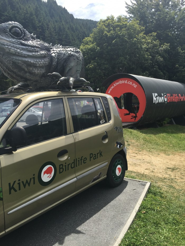 kiwi birdlife park 700x933 - A visit to Skyline Queenstown in Queenstown, New Zealand