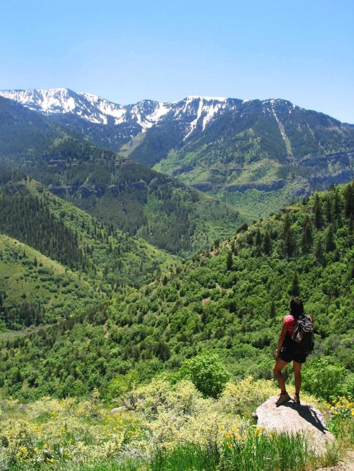 logan utah hiking 700x933 - Logan, Utah: Sights to delight all your senses