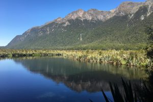 mirror lakes 300x200 - Travel Contests: June 15, 2016 - New Zealand, Jamaica, NYC & more