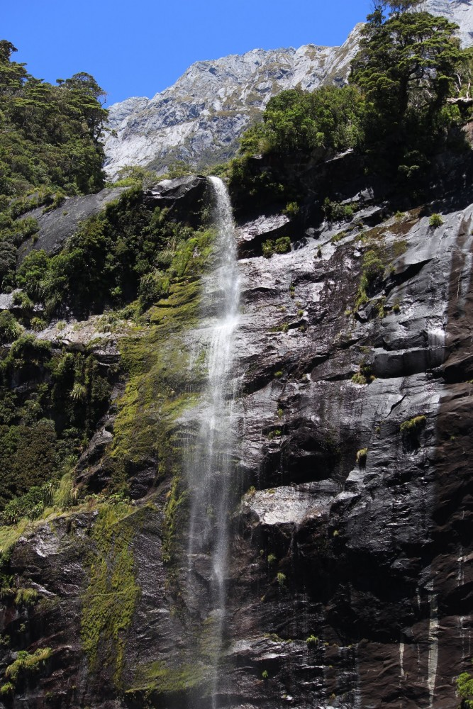 waterfall milford sound 667x1000 - A day trip to Milford Sound from Queenstown, New Zealand
