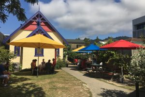 free house nelson 300x200 - The best craft beer in Nelson, New Zealand
