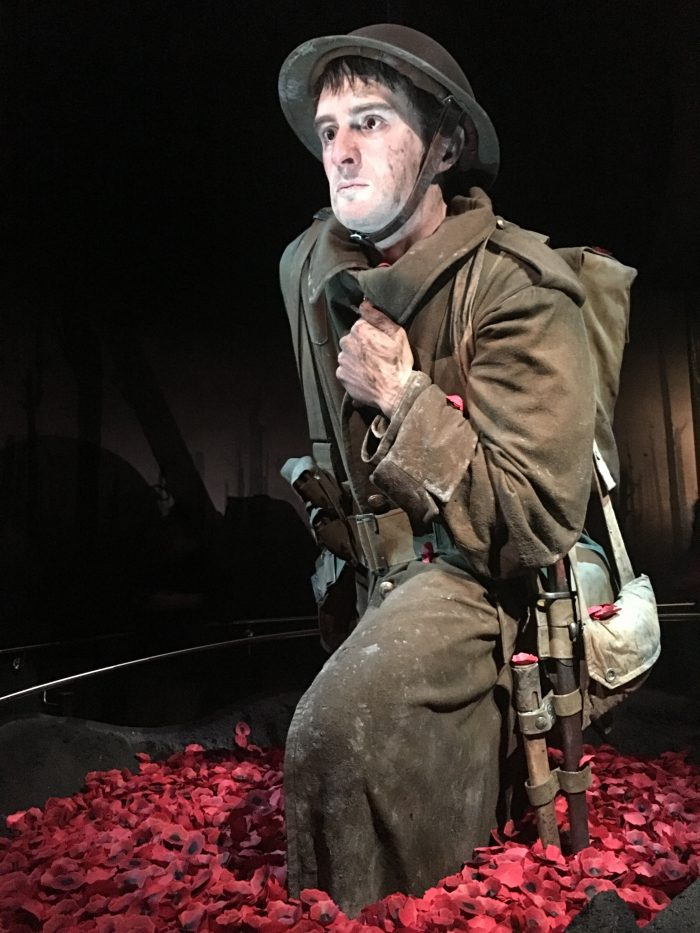 gallipoli exhibition 700x933 - Exploring the museums & parks of Wellington, New Zealand