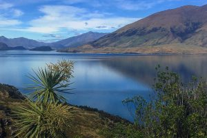 lake wanaka 300x200 - Queenstown to Franz Josef, New Zealand by bus