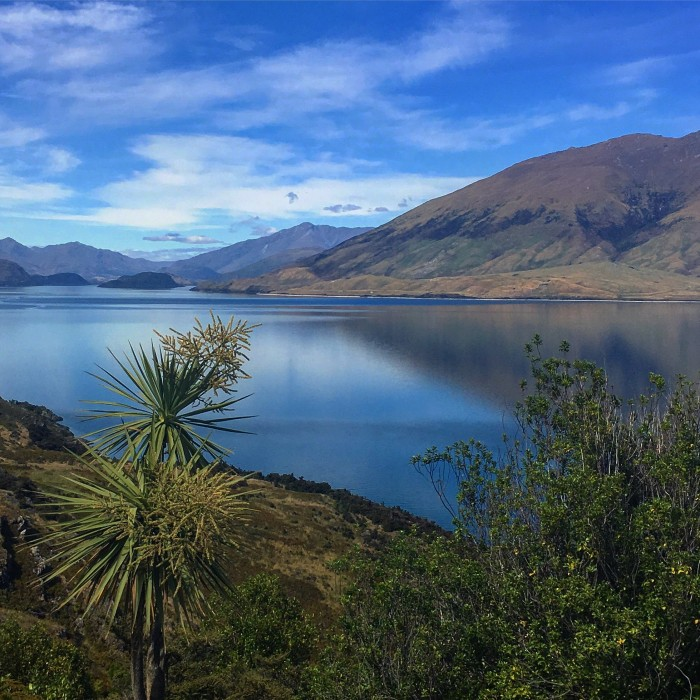 lake wanaka 700x700 - Queenstown to Franz Josef, New Zealand by bus