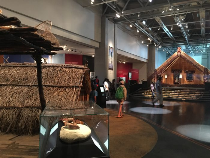 maori te papa tongarewa 700x525 - Exploring the museums & parks of Wellington, New Zealand