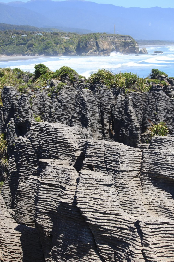 pancake rocks blowholes 667x1000 - Franz Josef to Nelson, New Zealand by bus
