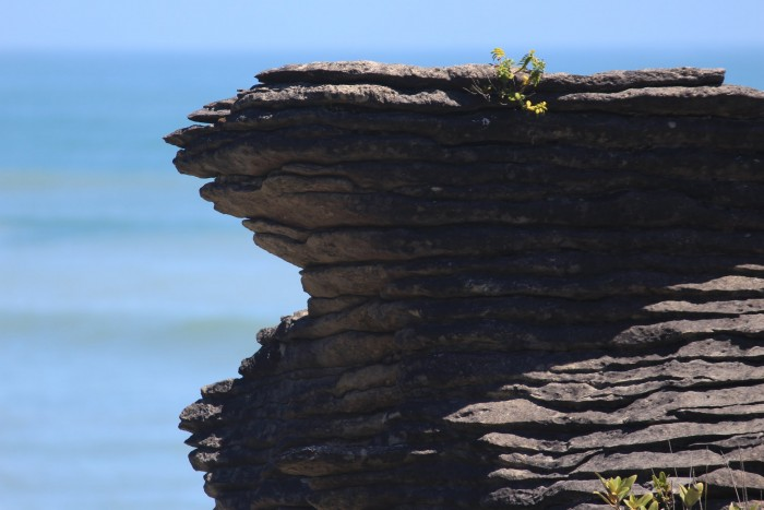 pancake rocks layers 700x467 - Franz Josef to Nelson, New Zealand by bus