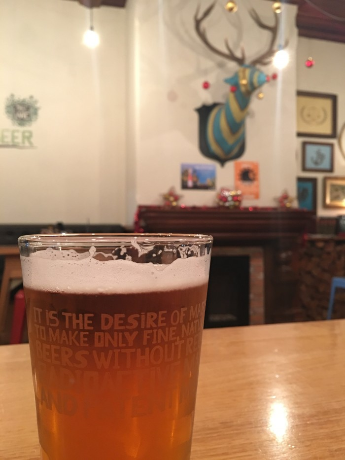 the vic nelson 700x933 - The best craft beer in Nelson, New Zealand