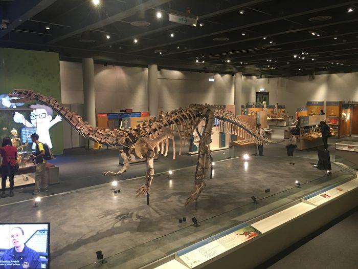 hong kong science museum dinosaur 700x525 - A rainy day in Hong Kong - Science Museum & Kau Kee noodles