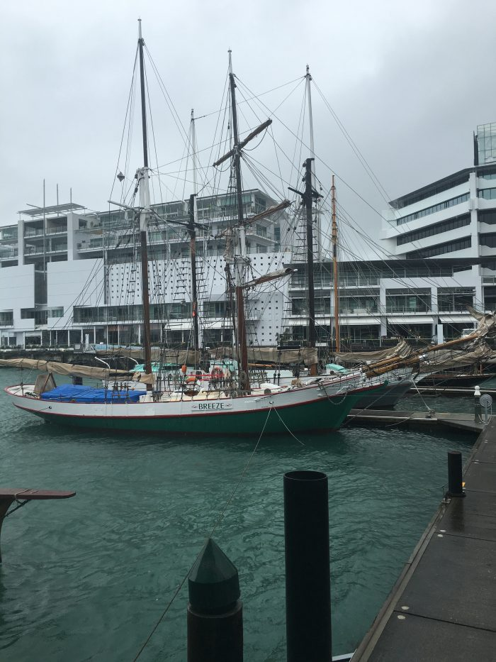 new zealand maritime museum pier 700x933 - A rainy day at the Auckland Art Gallery & New Zealand Maritime Museum