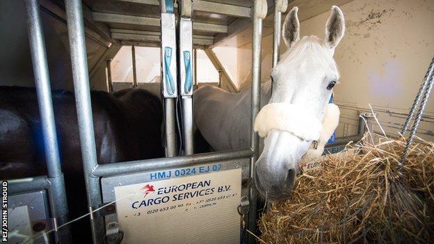 how do horses travel to the olympics - How do horses travel to the Olympics?