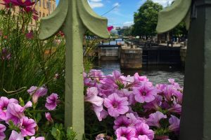 gothenburg canals flowers 300x200 - A day in Gothenburg exploring Slottsskogen & the city center