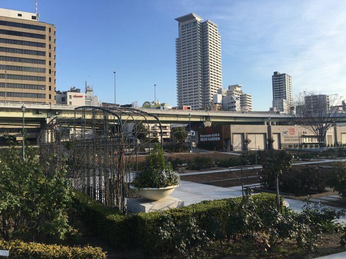 nakanoshima park osaka 700x525 - A layover in Osaka - Ramen, sushi, & exploring the city