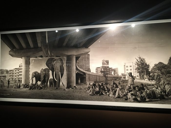nick brandt elephant underpass 700x525 - A visit to Fotografiska in Stockholm, Sweden