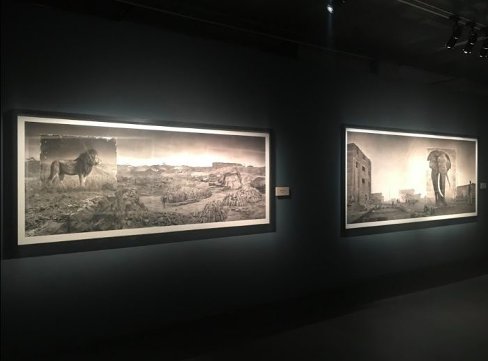 nick brandt inherit the dust animals 700x518 - A visit to Fotografiska in Stockholm, Sweden