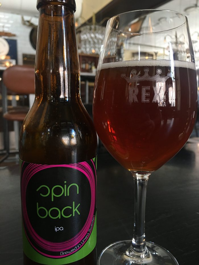 beer studio spin back 700x933 - The best craft beer in Umeå, Sweden