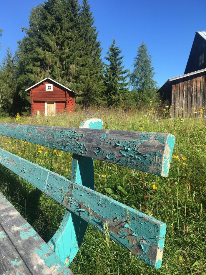 tjarn vasterbotten 700x933 - A relaxing visit to Tjarn farmstead in Vasterbotten, Sweden