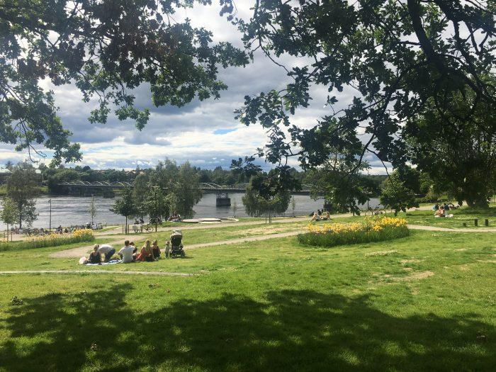 umea parks river 700x525 - A photo walk & museum visits in Umeå, Sweden