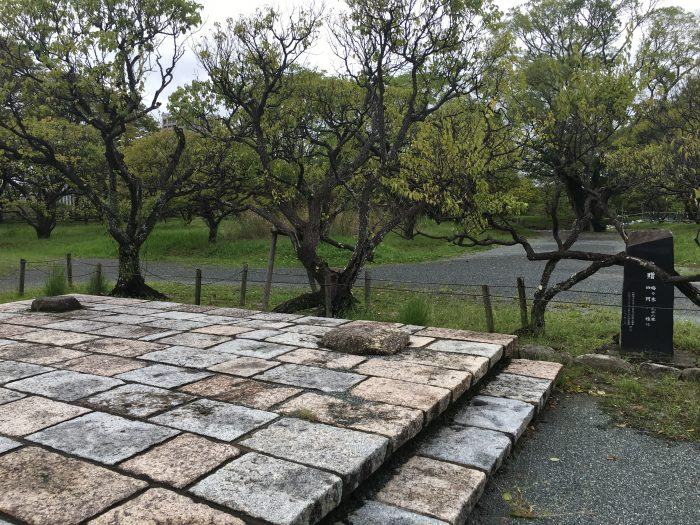 IMG 8969 700x525 - A walking tour of the parks, shrines, & temples of Fukuoka, Japan