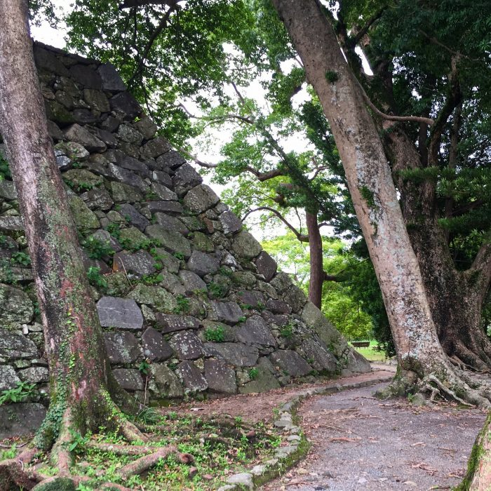 fukuoka castle park 700x700 - A walking tour of the parks, shrines, & temples of Fukuoka, Japan