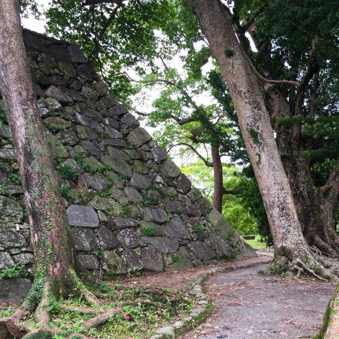 fukuoka castle park 700x700 - A walking tour of the parks, shrines, & temples of Fukuoka, Japan