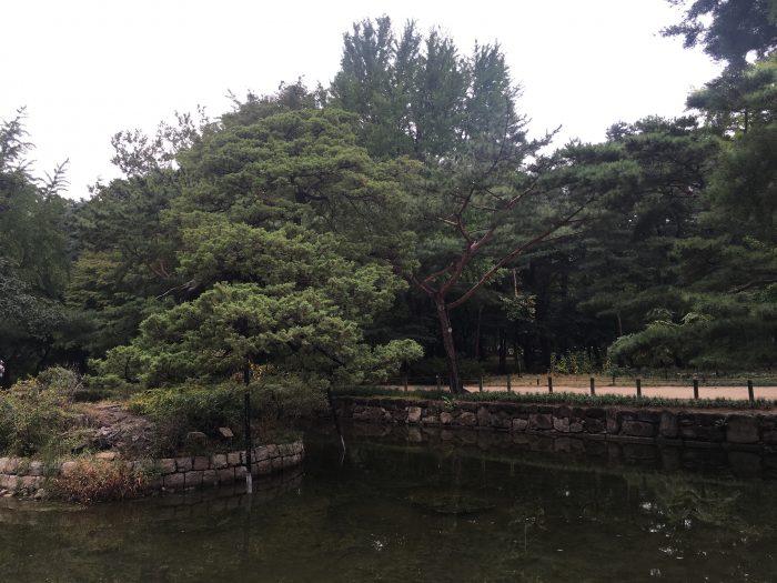 jongmyo shrine park 700x525 - A visit to Jongmyo Shrine in Seoul, South Korea